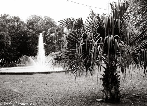 Spain Blog-09356