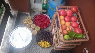 Plums and Cornelian cherry ready to be prepared, and some already made kompot. Photo: the author