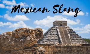 Mexican slang words like guey