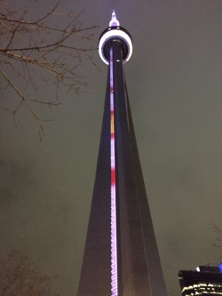 Night view of CN Tower
