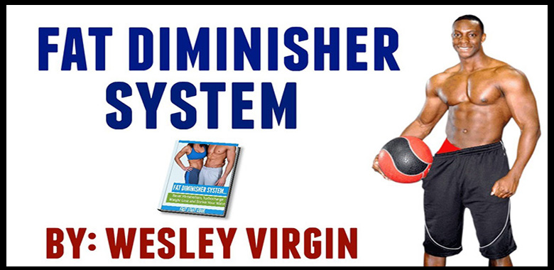 What is fat diminisher system?