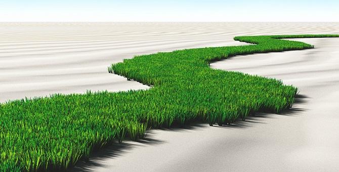 Best-Lawn-Fertilizer