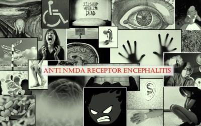 "What Encephalitis ""Looks"" Like"