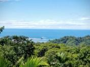 costa rica dominical