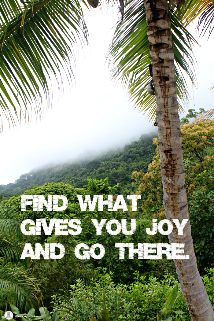 vacation-inspirational-quotes find what gives you joy and go there