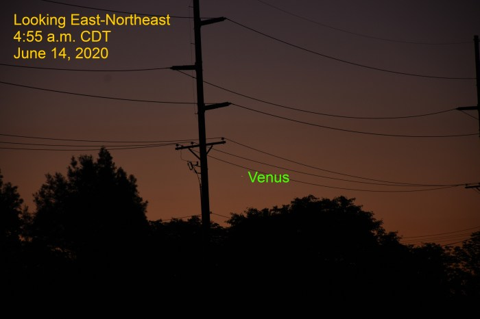 Venus returns to the morning sky, June 14, 2020