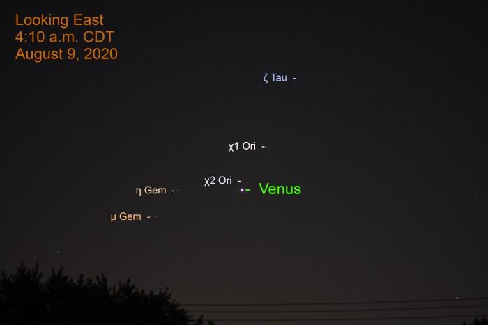 Venus in Orion, August 9, 2020