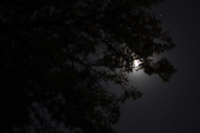 Moon in the Bull's Horns. October 8, 2020