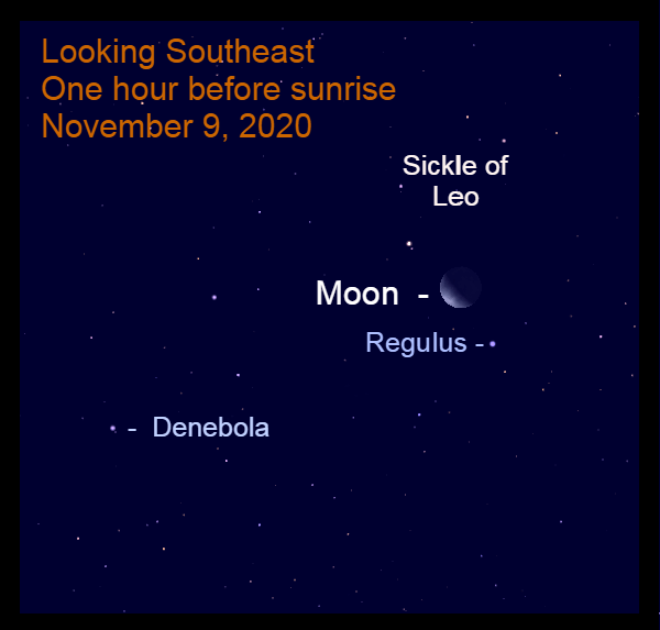 Moon and Regulus, November 9, 2020