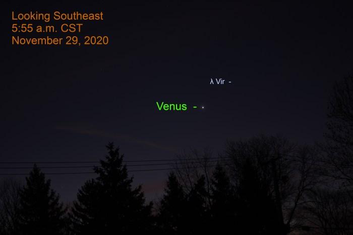 Venus before sunrise, November 29, 2020