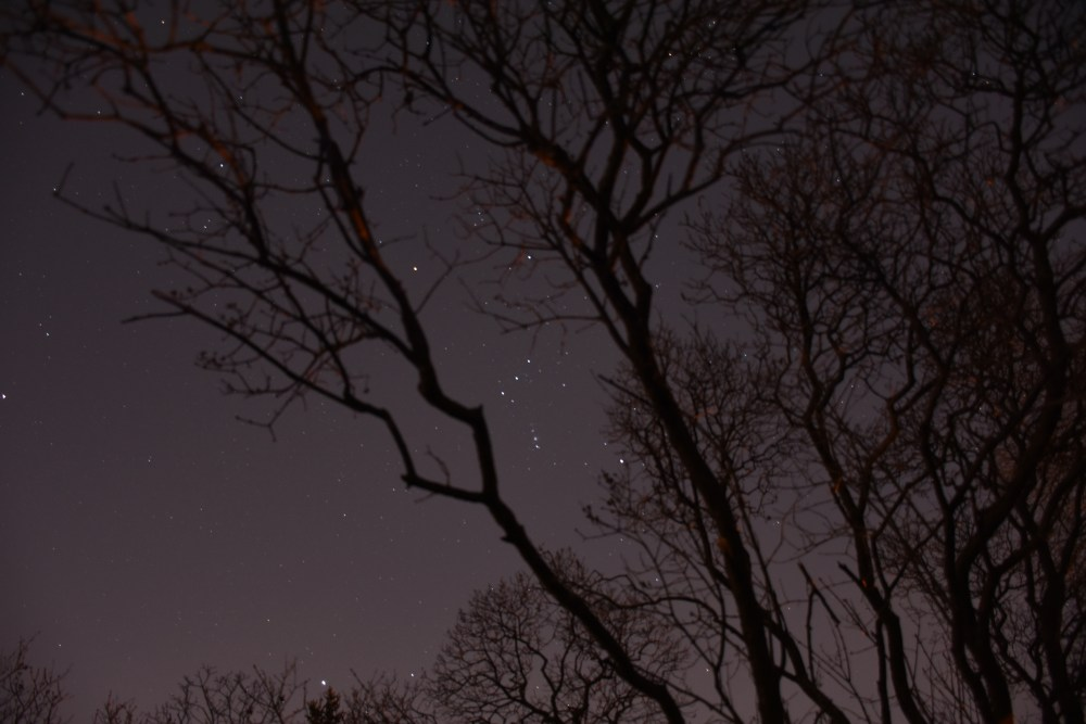 The constellation Orion rises into view during the early evening hours of February each year.