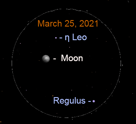 2021, March 25: A simulated binocular view of the gibbous moon with Regulus and Eta Leonis (η Leo).