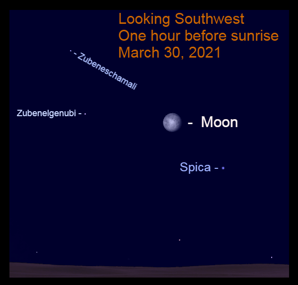 2021, March 30: Before sunrise, the moon is in the southwest, nearly 10° to the upper left of Spica.