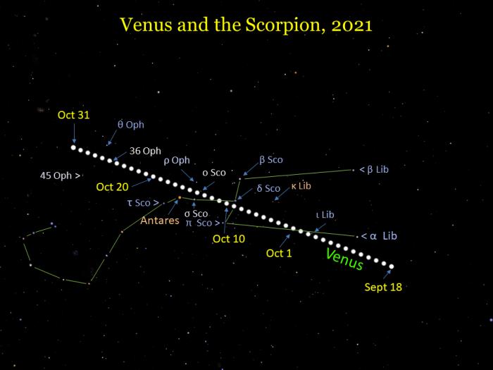 2021, September 18 - October: Venus moves through the classic Scorpion (Libra, Scorpius, and Ophiuchus).