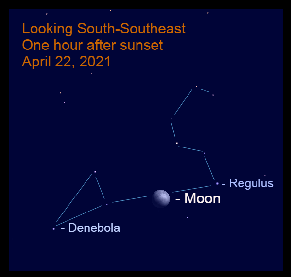 2021, April 22: The bright, gibbous moon is 8.5° to the lower left of Regulus in Leo.