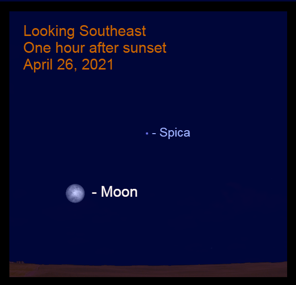2021, April 26: The bright moon is to the lower left of Spica this evening.