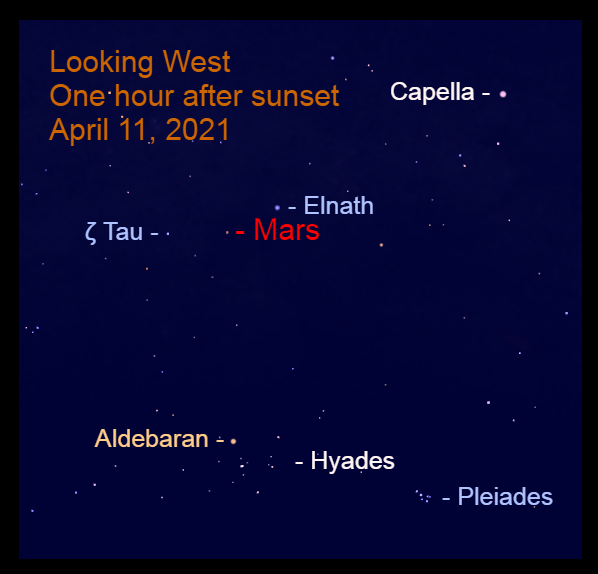 2021, April 11: Mars is in the west after sunset. It is beginning to move between the Bull's Horns, Elnath and Zeta Tauri (ζ Tau).