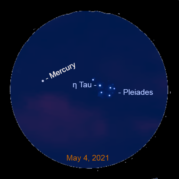 2021, May 4: Through a binocular spot the Pleiades star cluster to the lower right of Mercury, about 45 minutes after sunset.