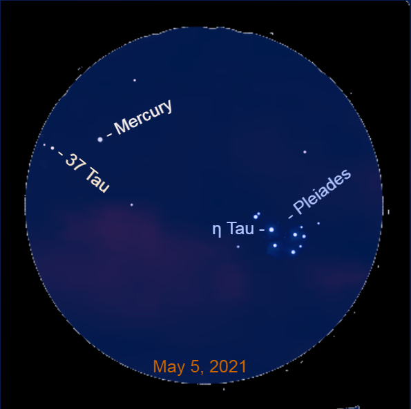 2021, May 5: With a binocular Mercury is to the upper left of the Pleaides star cluster and its brightest star Alcyone (η Tau).