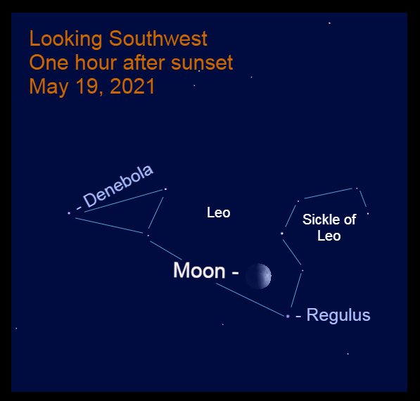 2021, May 19: After sunset the half-full moon is 4.9° to the upper left of Regulus.