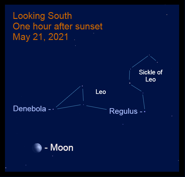 """2021, May 21: One hour after sundown, the gibbous moon is 11.5° to the lower left of Denebola, """"the tail of the lion."""""""