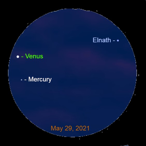 2021, May 29: Through a binocular, Mercury is 1.2° below brilliant Venus. The star Elnath is 5.4° to the upper right of Venus.