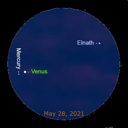 2021, May 28: Through a binocular Mercury is 0.4° to the lower left of brilliant Venus. The star Elnath is 4.9° to the upper right of Venus.