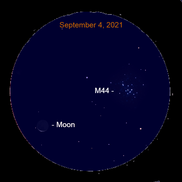 2021, September 4: Through a binocular, the thin crescent moon is 4.6° to the lower left of the Beehive star cluster (M 44).