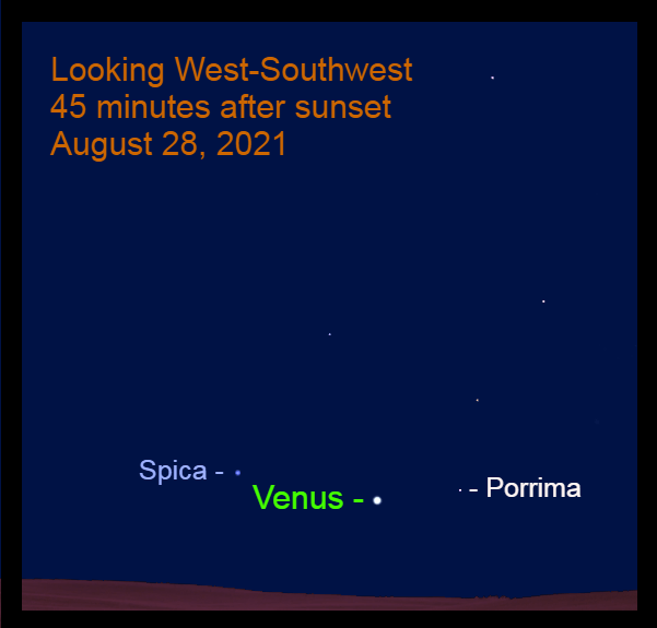 2021, August 28: After sunset, Venus continues to step eastward among the stars of Virgo.