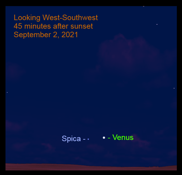 2021, September 2: Venus is 3.6° to the upper right of Spica.