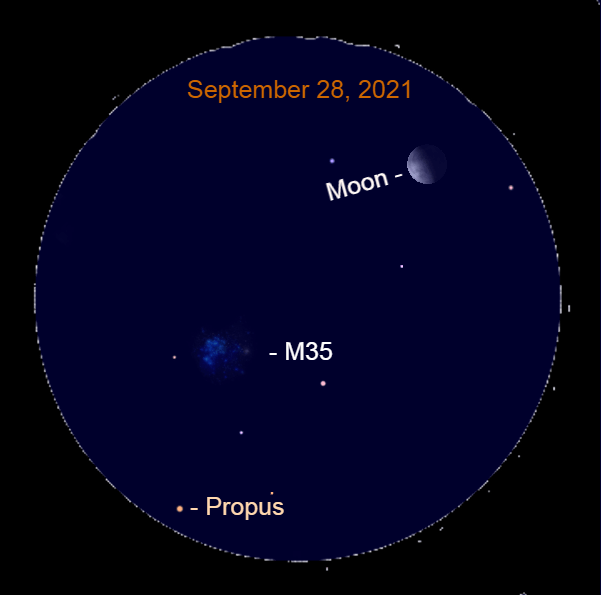 2021, September 28: Through a binocular, the moon, Messier 35, and Propus fit into the same starfield.