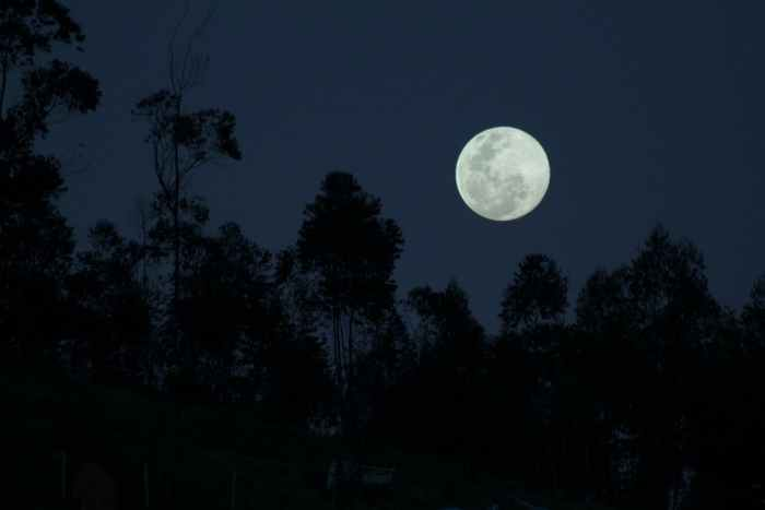 a full moon in the night sky