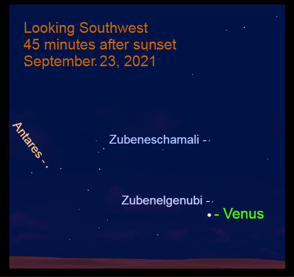 2021, September 23: Venus passes 2.0° to the lower left of Zubenelgenubi. Look for Antares over 25° to the upper left of the brilliant planet.