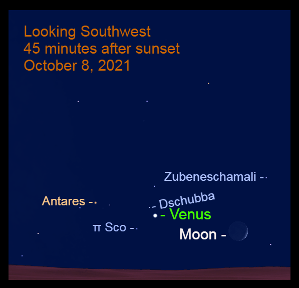 2021, October 8: The moon moves in toward Venus for close grouping with the head of Scorpius.