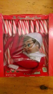elf on the shelf candy cane