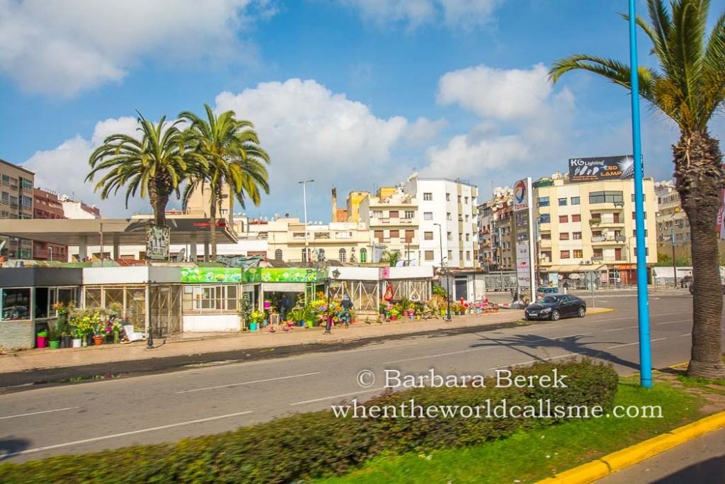 Casablanca DSC 3311 mini