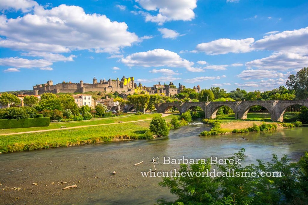 Carcassonne DSC 6007 mini