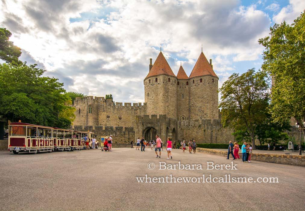 Carcassonne DSC 6050 mini