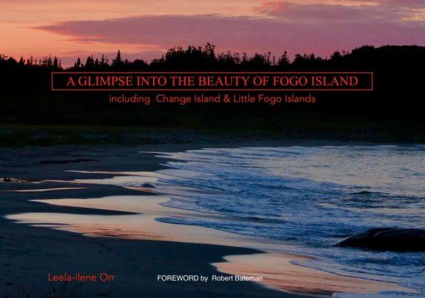 Indiegogo project for this Fogo Island photography book
