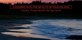 Indiegogo Project for This Photography Book