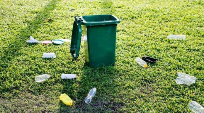 回收生活垃圾可以节省树木等