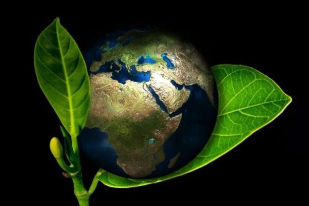 Eco-friendly strategies