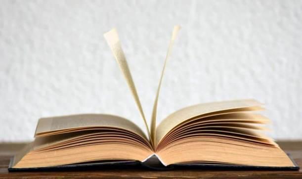 阅读西尔维亚·普拉斯