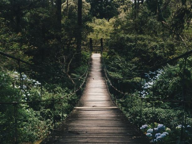 Naturspaziergang zur Verbesserung des Wohlbefindens
