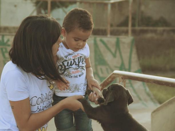 Benefits of puppies for family