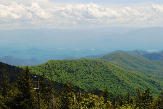 Great Smoky Mountains National Park is the most visited national park in the country. Here are the must sees and less-known treasures in this historic mountain paradise.