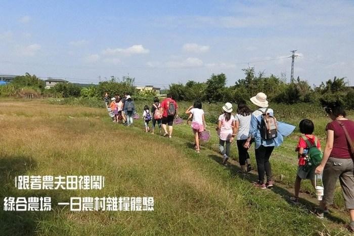 |跟著農夫田裡鬧|國產雜糧十大經典體驗路線-大溪綠合農場
