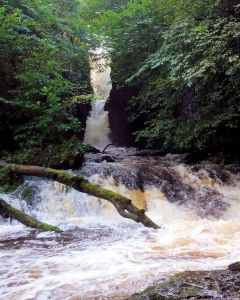 Catrigg Foss in spate