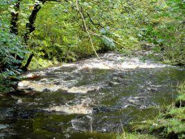 Croasdale Brook