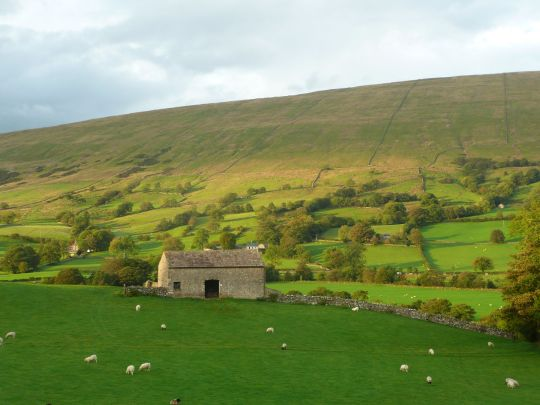 Dentdale, late summer